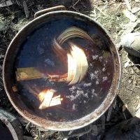 boiling willow bark