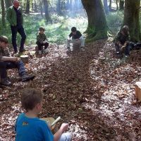 clydey woods2