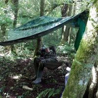hammock camp2