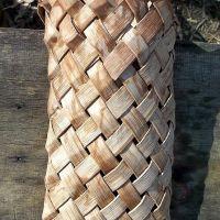 inner bark quiver