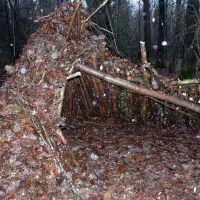 natural shelter